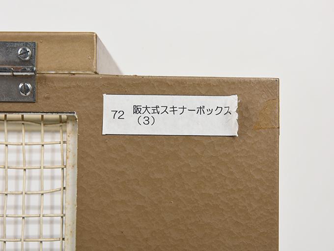 スキナーボックスのケージ阪大式スキナーボックス(3)9