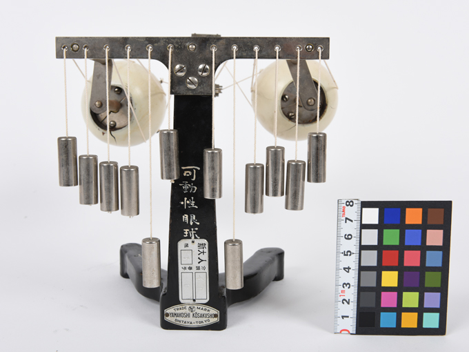 可動性眼球模型4