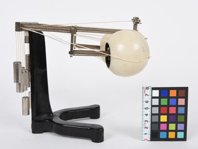 可動性眼球模型5