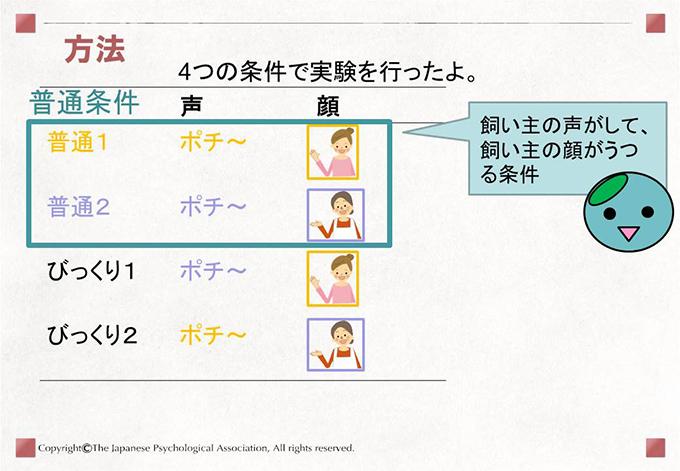 [方法]4つの条件で実験を行ったよ。 飼い主の声がして、飼い主の顔がうつる条件