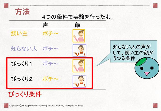 [方法]4つの条件で実験を行ったよ。 知らない人の声がして、飼い主の顔がうつる条件
