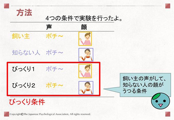[方法]4つの条件で実験を行ったよ。 飼い主の声がして、知らない人の顔がうつる条件