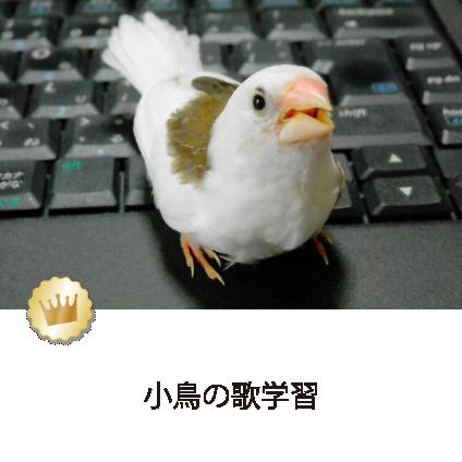 小鳥の歌学習