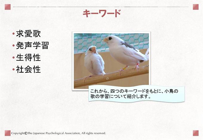小鳥の歌学習2