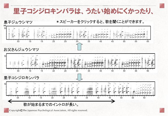 小鳥の歌学習12